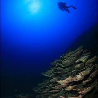 053-Дахаб,-Красное-Море,-Декабрь-2010