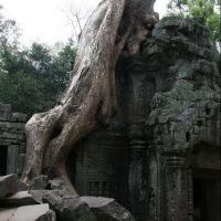 011-Камбоджа-храмовый-комплекс