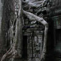 014-Камбоджа-храмовый-комплекс
