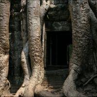 015-Камбоджа-храмовый-комплекс