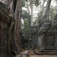 017-Камбоджа-храмовый-комплекс