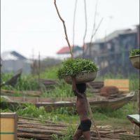 038-Камбоджа-озеро-Тонле-Сап-плавучая-деревня