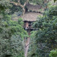 050-Лаос-Nam-Kan-National-Park-Gibbon-Experience