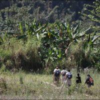 053-Лаос-Nam-Kan-National-Park-Gibbon-Experience